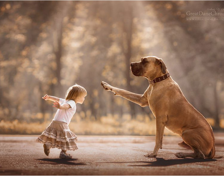 little-kids-big-dogs-friendship-7