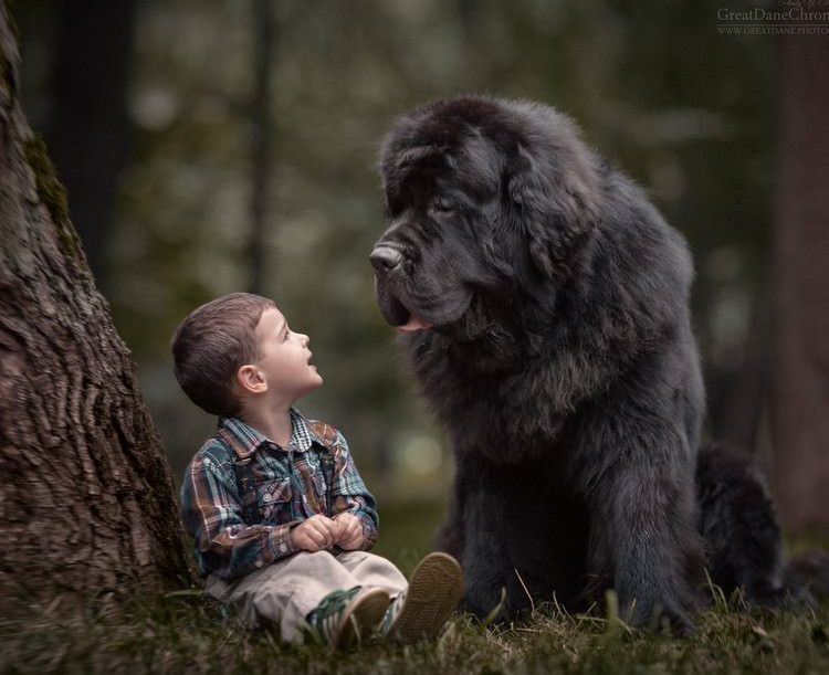 little-kids-big-dogs-friendship-9