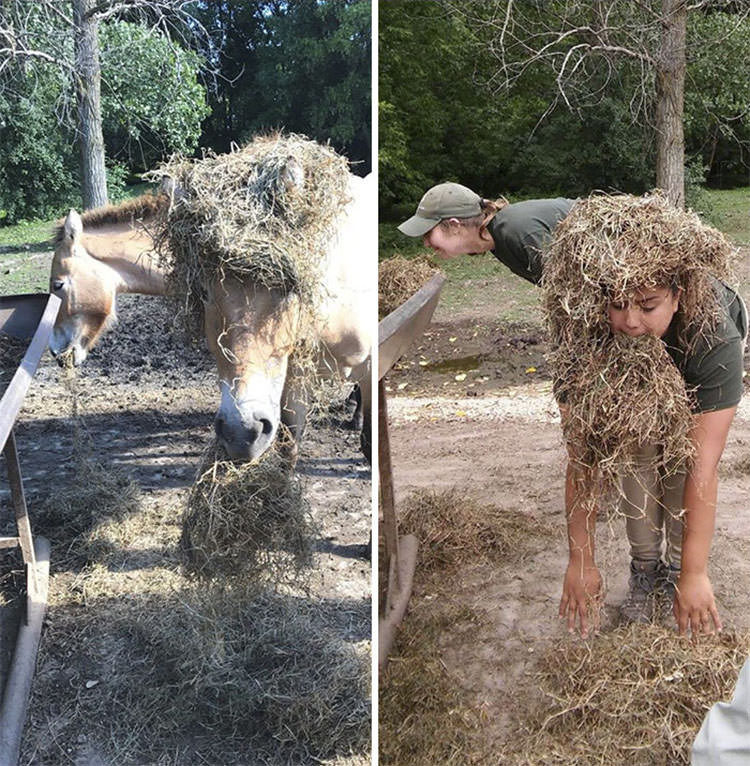 zookeepers pose like animals