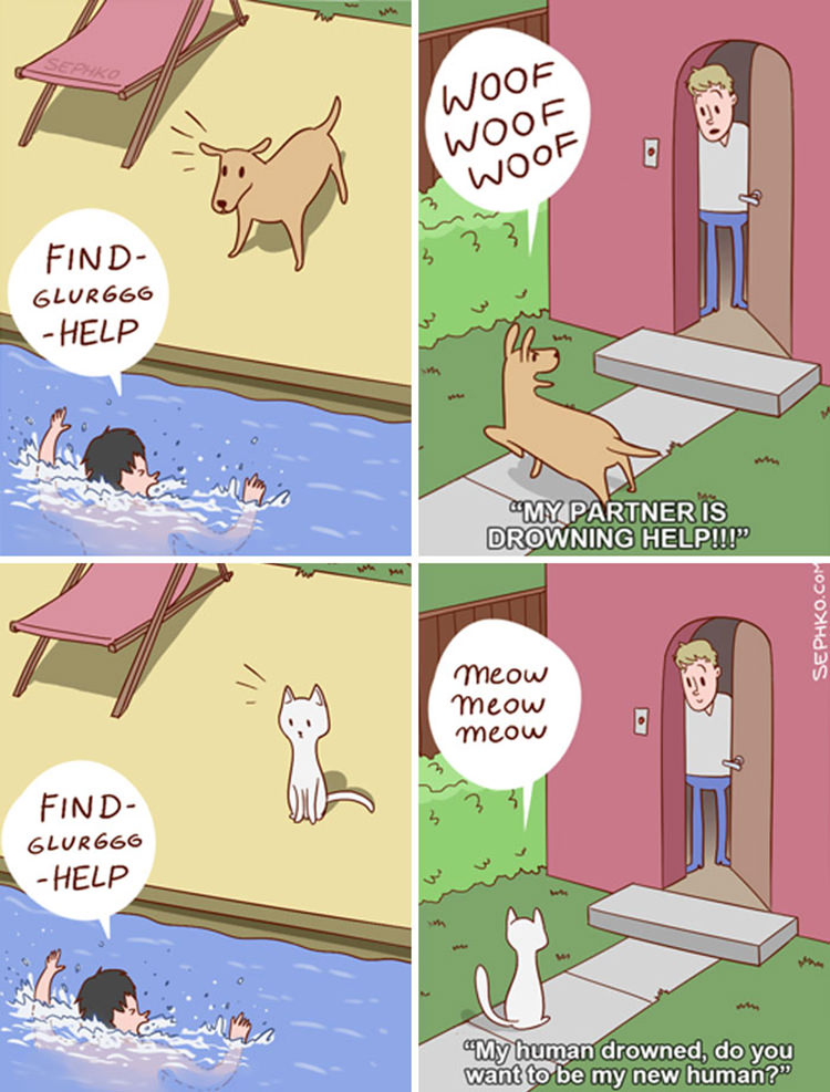 cats-and-dogs-funny-comics
