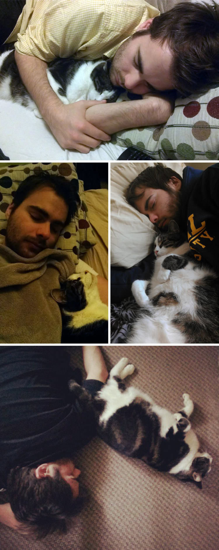 pets-steal-significant-other-funny-pics