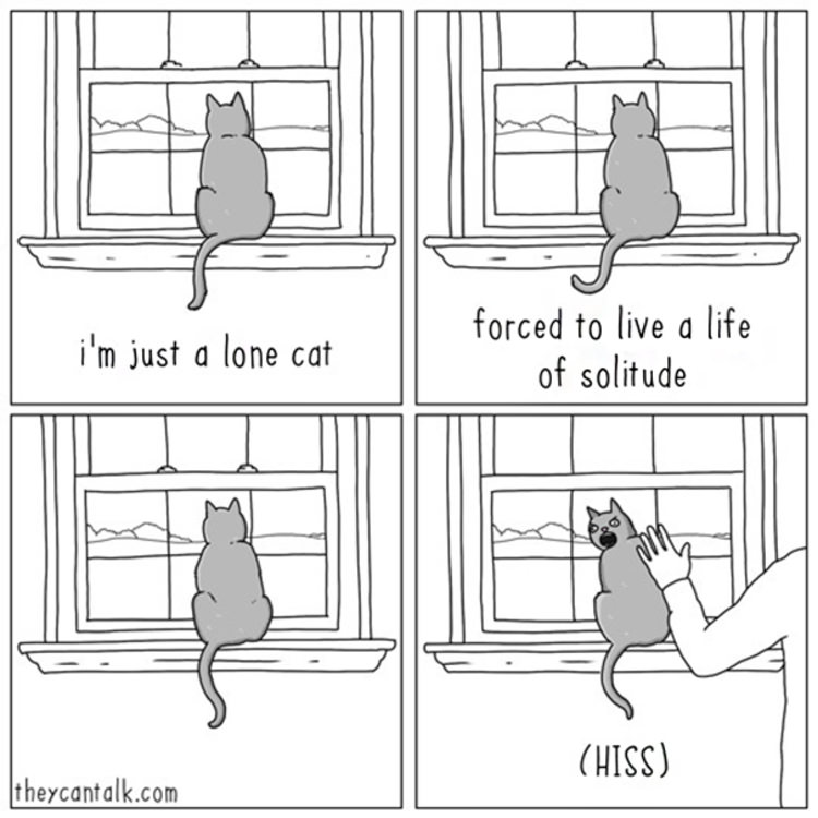funny-comics-cats-dogs-differences