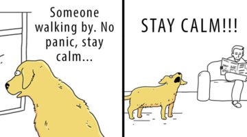 19 Comics About Cats And Dogs That Are Impossible Not To Laugh At