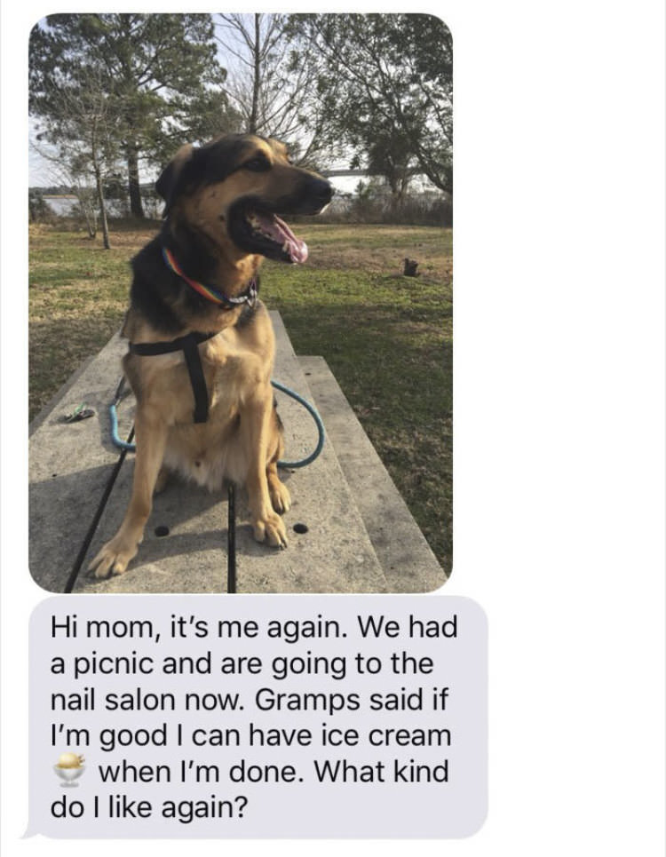 woman-leaves-dog-with-dad-funny-text-messages