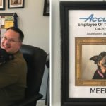 Dog Has Earned All 'Best Employee' Awards Since Dad Began Working At Home