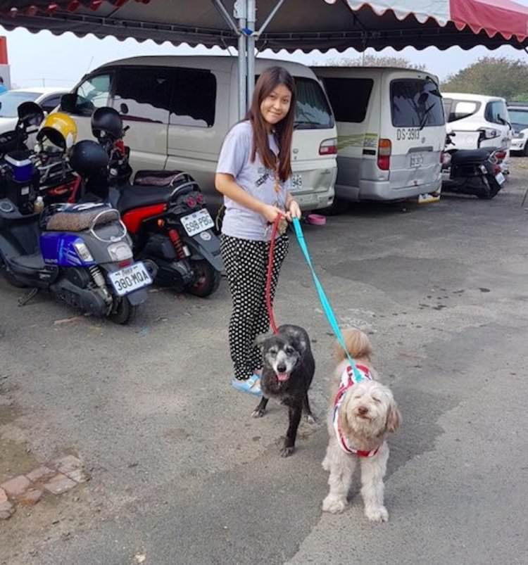 family-cares-for-3000-dogs