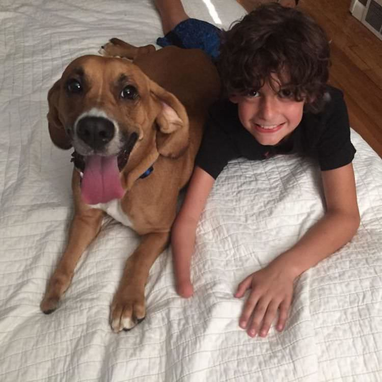 kids-need-a-dog-pictures