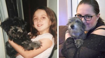 Woman Adopts A Dog, Then Realizes It's Her Childhood Best Friend