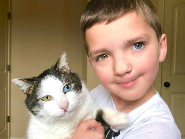 boy-and-cat-same-eyes-cleft-lip-best-friends