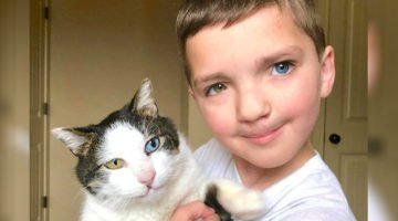 Boy Finds Rescue Cat With Same Rare Eye Condition And Cleft Lip, And It's Like They Were Destined To Be Best Friends