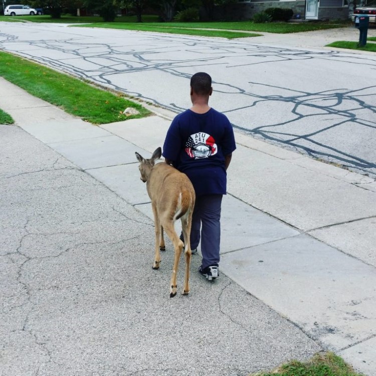 10-year-old-walking-with-a-blind-deer