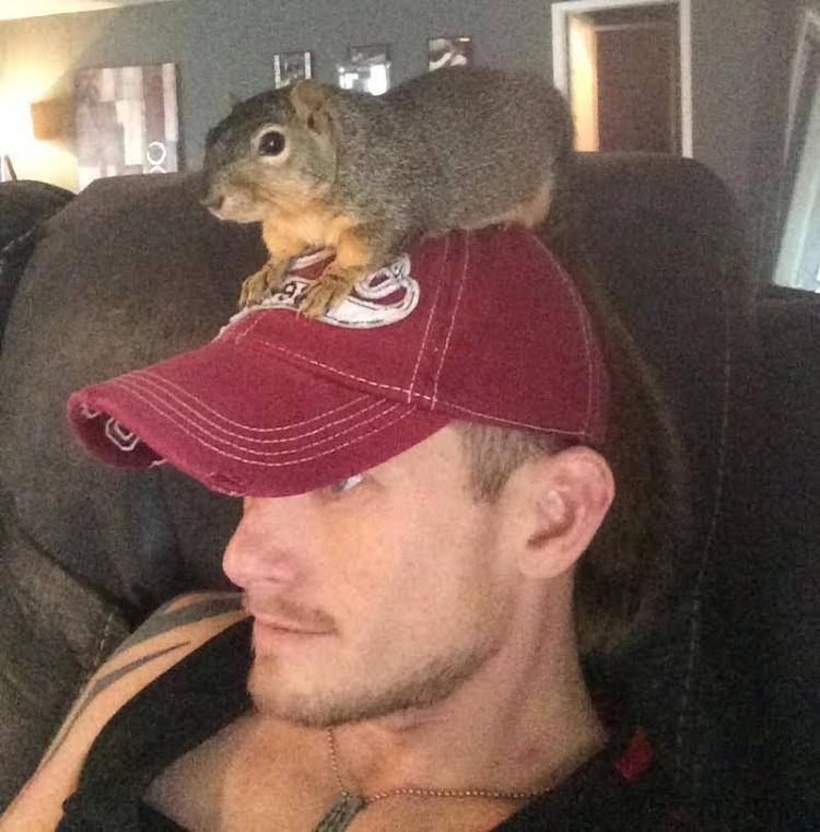 baby-squirrel-fell-from-tree-rescue