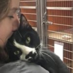 This Shelter Cat Could Not Get Adopted But Now He Is Hugging Everyone He Meets