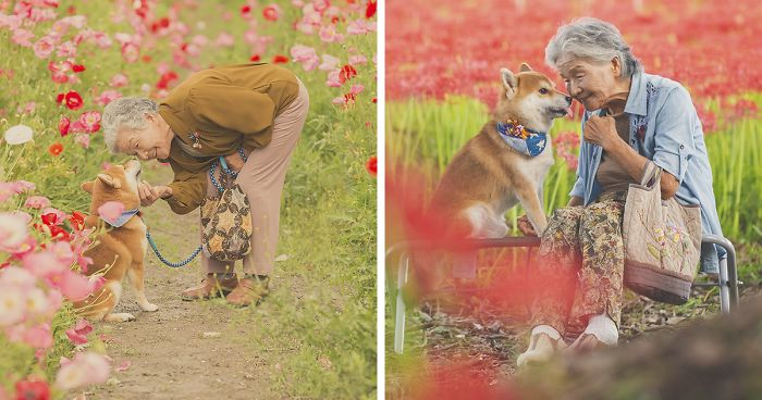 This Photo Session For Grandma With Her Dog Is Heartwarming